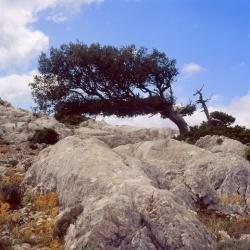 Sardinien: Wandern und wundern