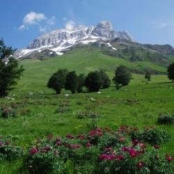 Genusswanderungen in den Abruzzen: Gemütlich unterwegs Rund um Gran Sasso