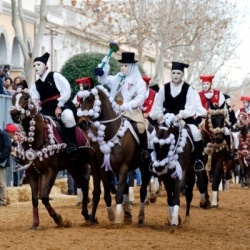 Winter auf Sardinien: Reiterfest in Oristano